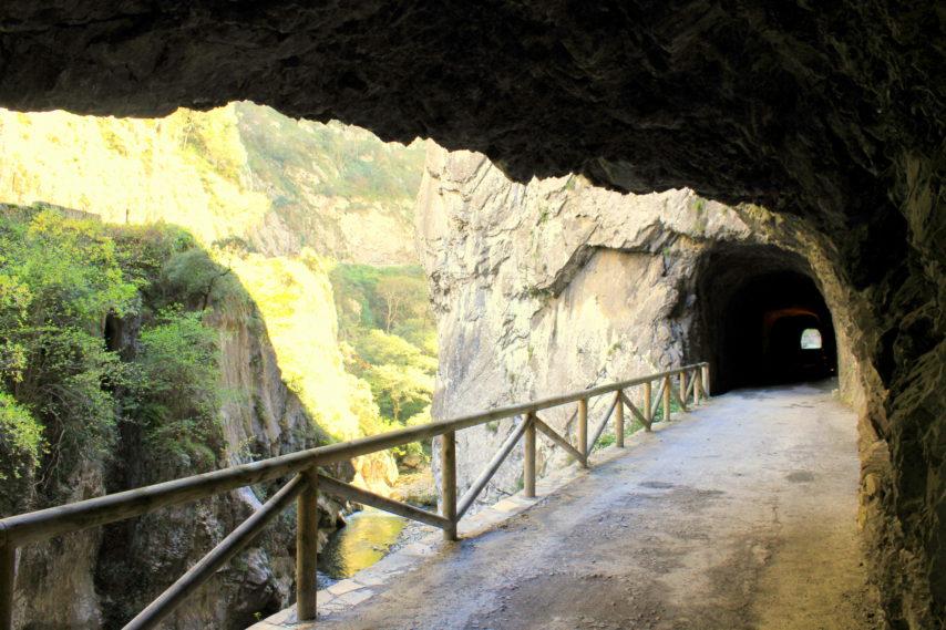 Senda del Oso túnel