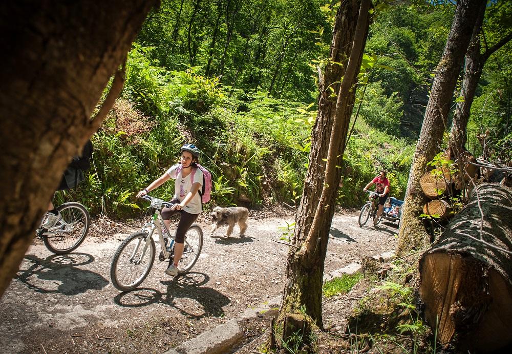 Ruta en bici por Asturias en la Senda del Oso