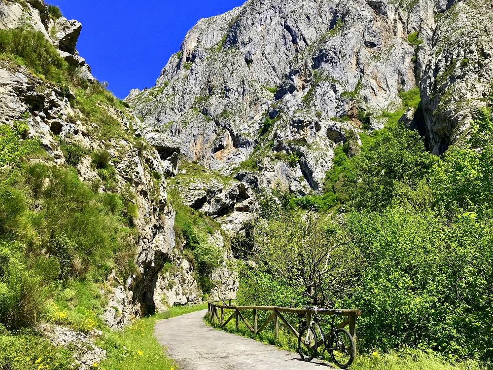 La Senda del Oso en Asturias